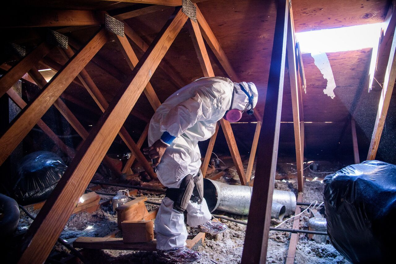 man conducting attic cleaning