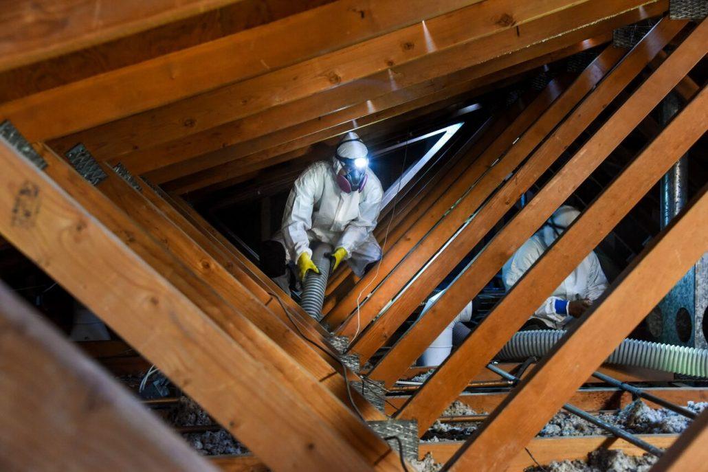Attic Insulation Contractors in Los Angeles, CA by Green Rat Control