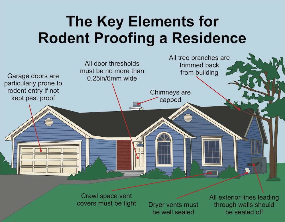 the key elements for rodent proofing a residence
