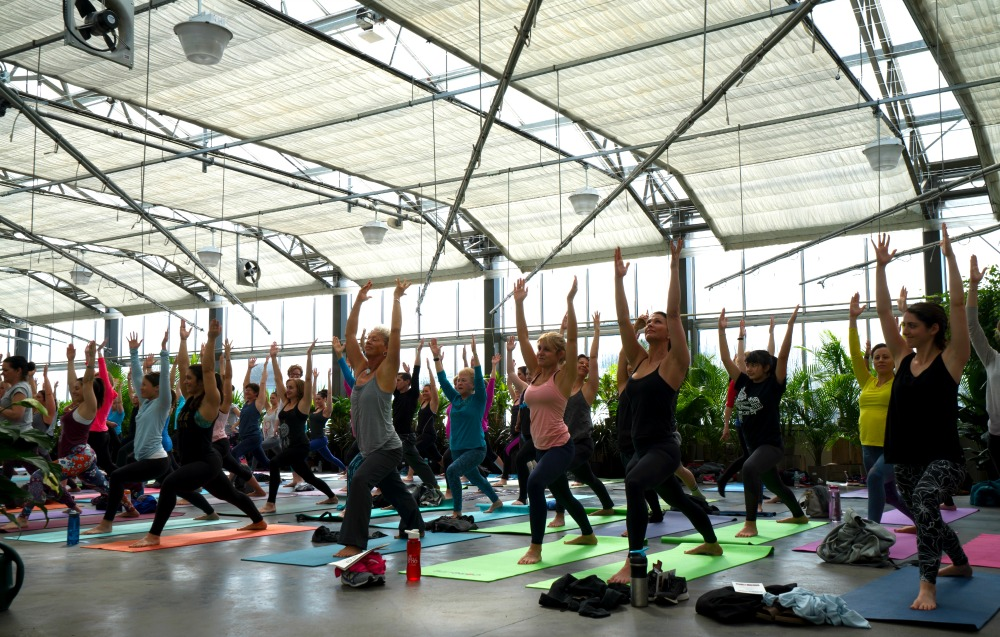 CoreLife Eatery launched a special yoga event as part of a restaurant marketing effort to promote its brand in Syracuse, NY.