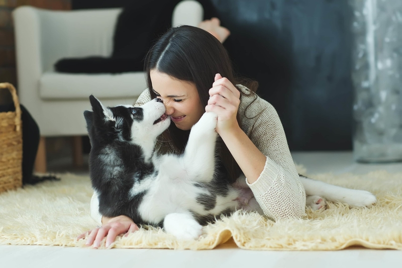 girl fondly playing with beloved pet in a rodent-free home