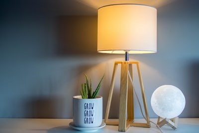 a plant and a lamp showing diy apartment hacks