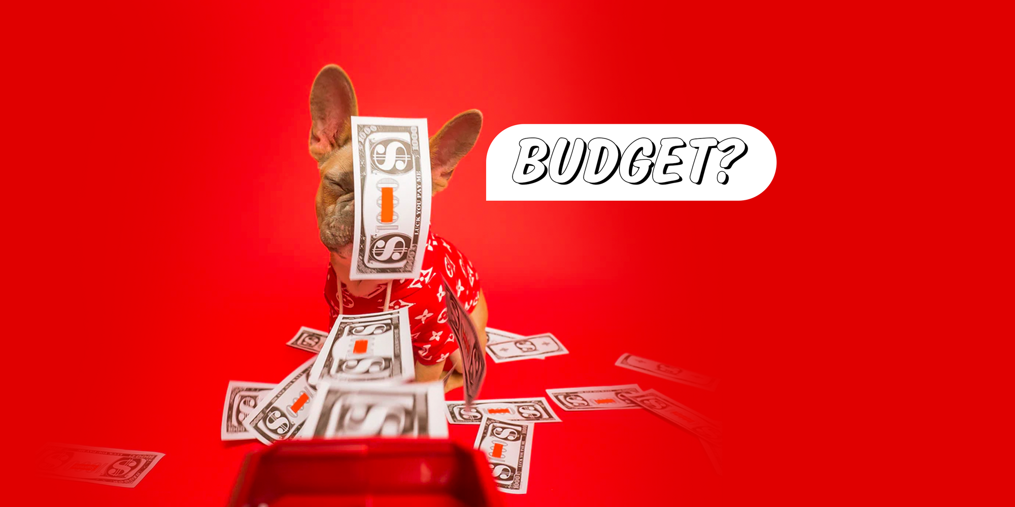 5 things you should be budgeting for.