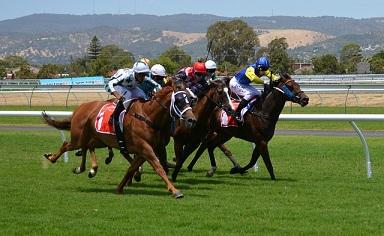 horserace betting