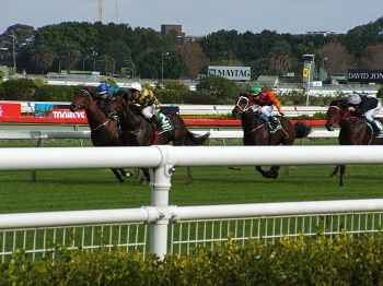 thoroughbred horserace betting