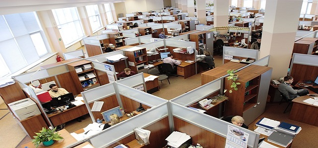 programmer analyst cubicles