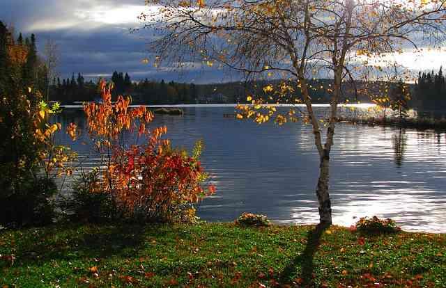 beautiful landscape colors