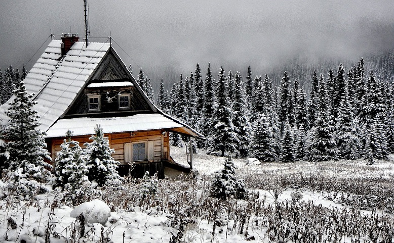 winter white cabin