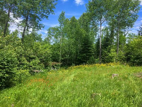 14733 Moose Lake Water Access, Ely, MN 55731