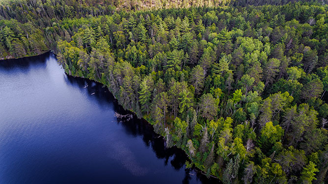 TBD Garden Lake Rd, Ely, MN 55731