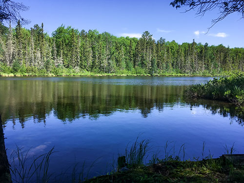 TBD Migisi Rd, Ely, MN 55731