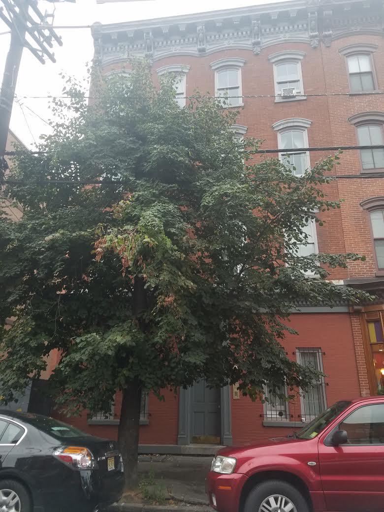 1st st 5, Jersey City, NJ 07302