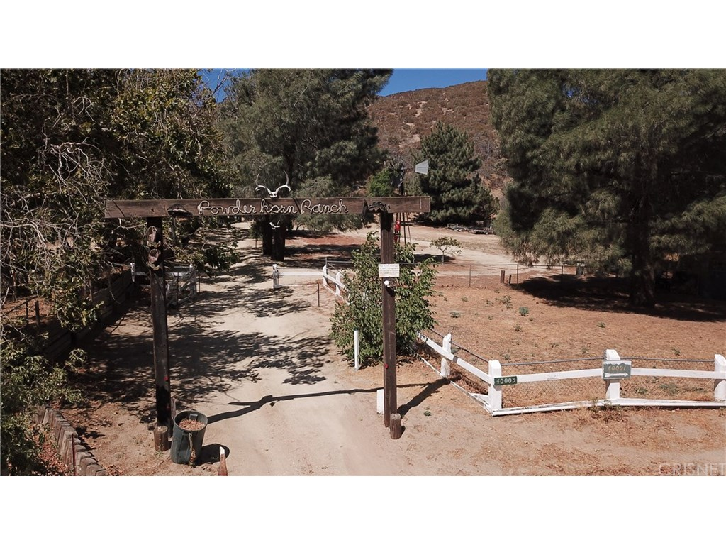 40003 107TH ST, Leona Valley, CA 93551