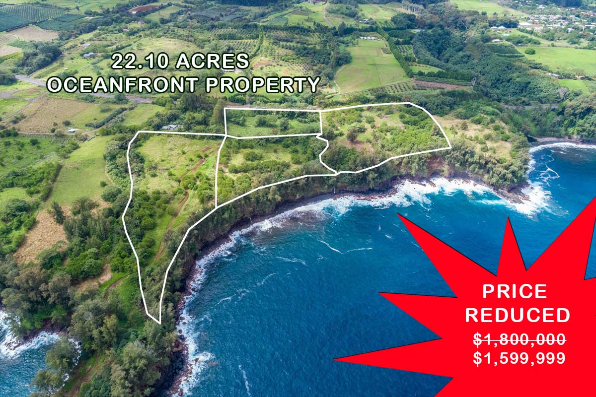 This oceanfront property provides an incredible view of the ocean and the mountains and is bordered by fresh water spring and stream, given such proximity it indeed has the best that Hamakua has to offer. It's a place where one can commune with nature and enjoy a stroll along country road or just sit back and enjoy the coastline amidst splashing waves. Your ocean frontage is approximately 2000 feet and 1070 of road frontage, simply wow!  It is very accessible and near some tourist spots including the majestic Akaka Falls. The quaint Honomu Village is just a few minutes away and a mere 20 minutes drive to Hilo shopping center and the University of Hawaii. This is truly an ideal place for you and your family.  Includes parcels TMK 3-2-8-12-30, TMK 3-2-.8-12-31 and TMK 3-2-8-12-32.  Properties are located on Hwy 19 between M/M 12 and M/M 13 on the ocean side. From M/M 13 going towards Hilo, 3-2-8-12-29 starts about 820 feet away. Look for the sale sign.
