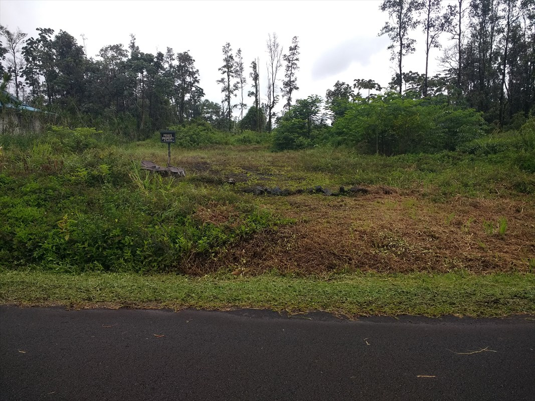 Perfect location makes this an ideal lot. Located infront of Ainaloa Subdivision and minutes away from Black Sand Beaches, Pahoa Village, Hilo Town and the new Orhidland Shopping Center.  This property has also been bulldozed and ready for you to build your home.  From Hwy 130 turn into Ainaloa Blvd (M/M 7) turn into Hapuu drive, lot on the right side between pole $5 & 6 (across the street). Property has been bulldozed and staked.  Please go to http://www.ainaloacommunityassociation.org for information about Ainaloa Subdivision.