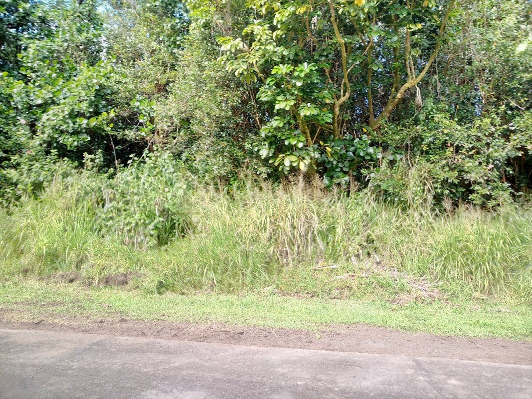 Property is located on a very nice street near the front of the subdivision. There is water, power and paved road.   Hwy 130 pass M/M 10 left on Kahukai Street, Right on S. Aweoweo Street, 3 lot from the end of the road on the left side