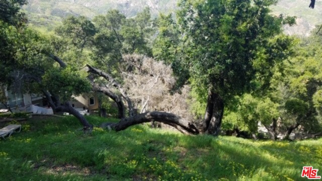 Finally just what you've been looking for! Beautiful foliage, views and ready to build Malibu lot. Permits to build 2,000 sqft. Available plans, some reports, permit. Buyer to verify all information is accurate.