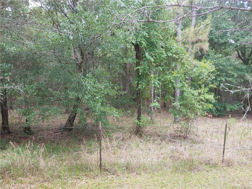 Beautiful home site in a highly desirable neighborhood, just waiting for your new home. Just outside the hustle and bustle of the big city and yet a short drive to Ocala, Crystal River and the wonderful golf courses that blanket Citrus county. Kayaking and fishing in your own backyard. Make this yours today and start living the good life.