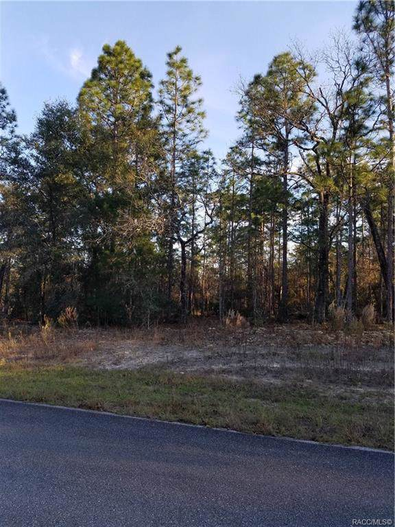 Perfect location for your dream home! Home site is close to Dunnellon, Ocala, Inverness, and Crystal River. Great area for fishing, tubing, boating, kayaking and paddle boarding. Near Withlacoochee State Trail a 46 mile multi use trail for walking and or biking. Close to dining, shopping and medical facilities. Come take a look at this prime building site and enjoy the peace and quiet of the Citrus springs area.  Property Features Association YNNo Current UseResidential Listing TermsCash PossessionClosing Property Sub TypeUnimproved Land SewerSeptic Needed Special Listing ConditionsStandard Tax Annual Amount92 Tax Year2019 Water SourcePublic