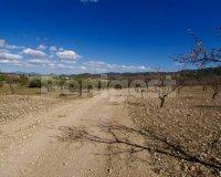 Land in Murcia (3)