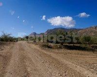 Land in Murcia (11)