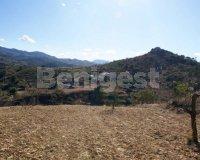 Land in Murcia (1)