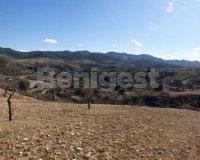 Land in Murcia (2)