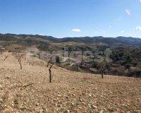Land in Murcia (12)