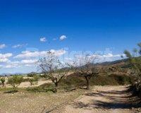 Land in Murcia (18)