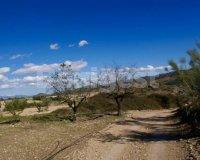 Land in Murcia (19)