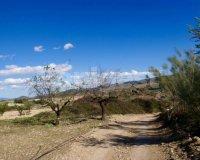 Land in Murcia (20)