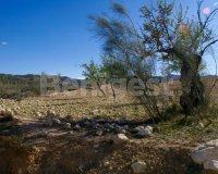 Land in Murcia (22)
