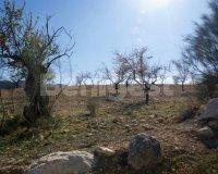 Land in Murcia (23)