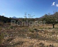 Land in Murcia (29)