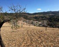 Land in Murcia (31)