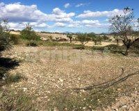 Land in Murcia (37)