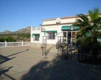 Villa in Albatera (2)