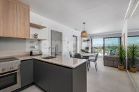 Two bedroom apartments with spectacular views (3)