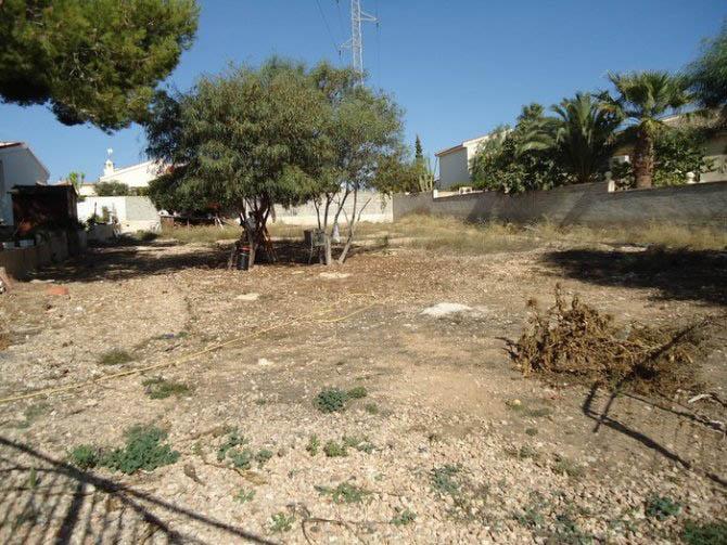 Land for Sale Central Quesada