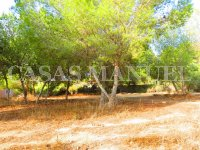 Plot for Sale in Res. Montemar (Urbano) (4)