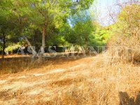 Plot for Sale in Res. Montemar (Urbano) (6)