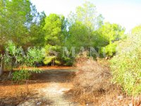 Plot for Sale in Res. Montemar (Urbano) (5)