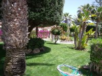 Luxury Apartment in Playa Flamenca (1)