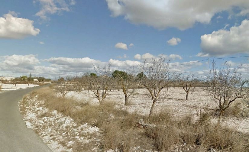 Rural Properties For Sale Near Alicante