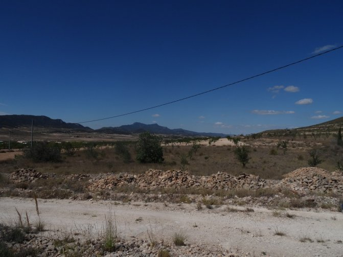Property For Sale Canada Del Trigo Spain