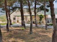 Villa Avellana