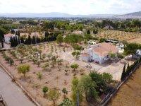 Villa Olivar
