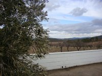 Finca Colonia Sierra de Salinas