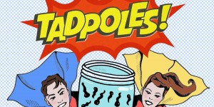 M6 Theatre present a brand new production for 5yrs+ and families: 'Tadpoles' here at Lancaster Arts at Lancaster University
