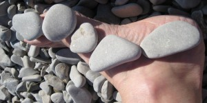 Wildscapes Diane Sammons foot and stones